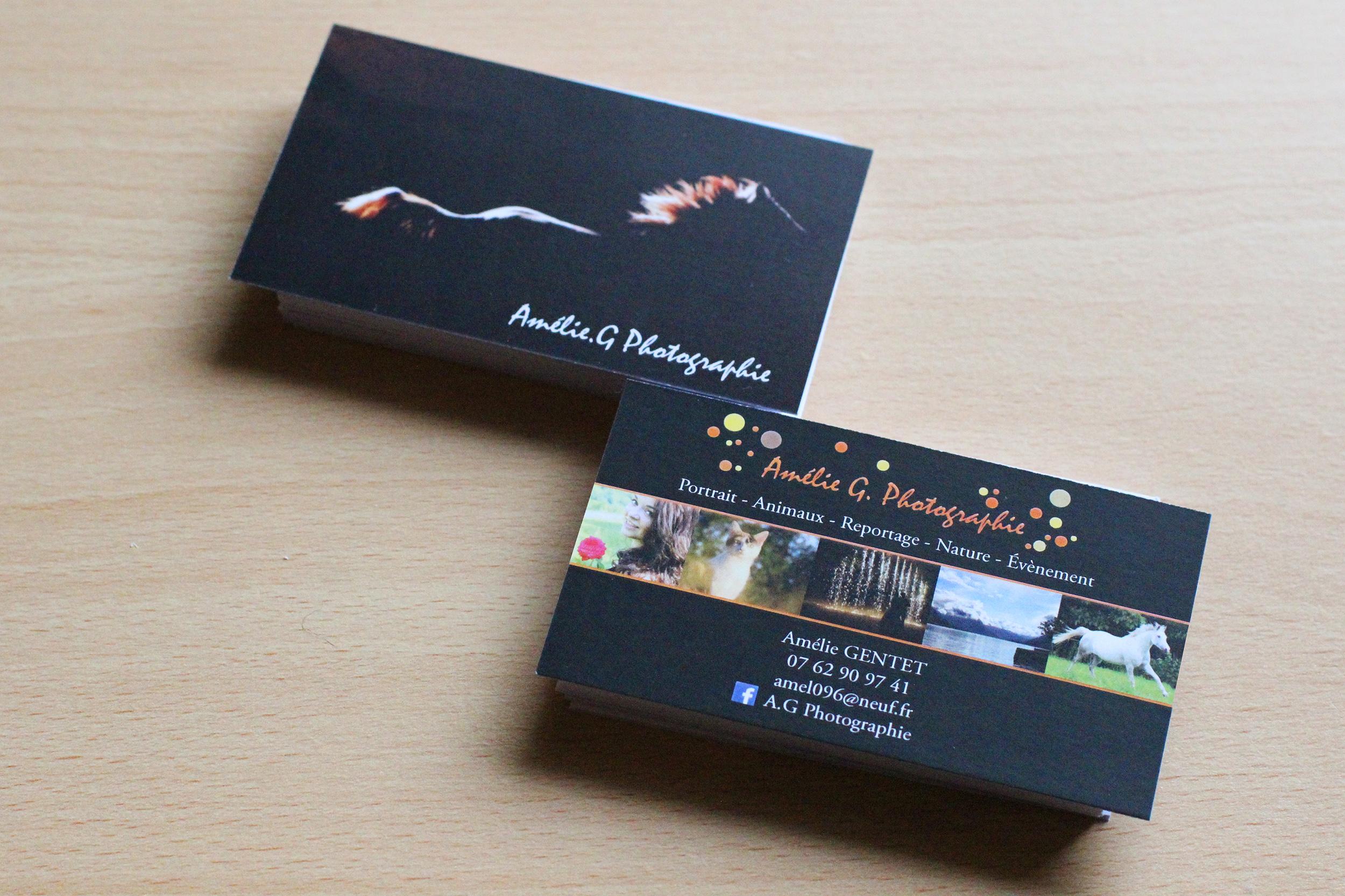 Cartes De Visite MN PRO Laetitia Marchetto
